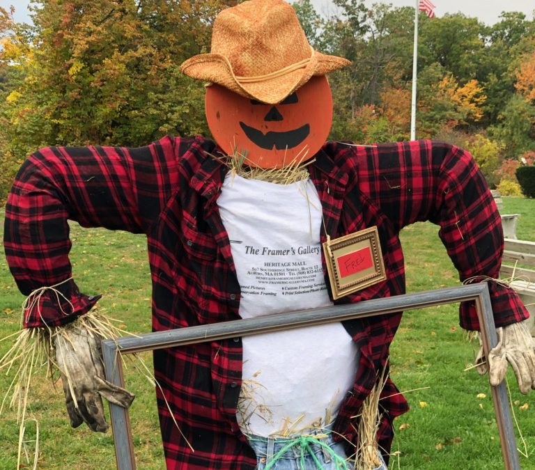 First Scarecrow is up!