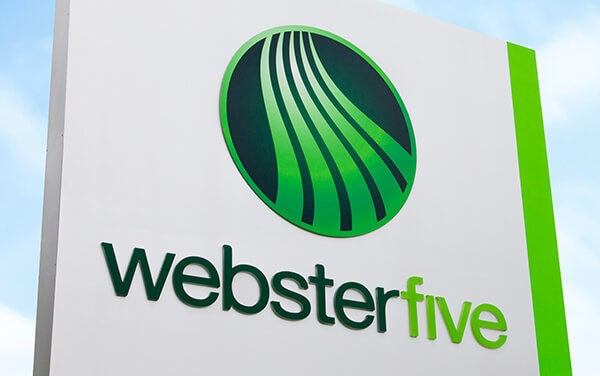Webster Five Hires Kathryn Megraw as Chief Information Officer